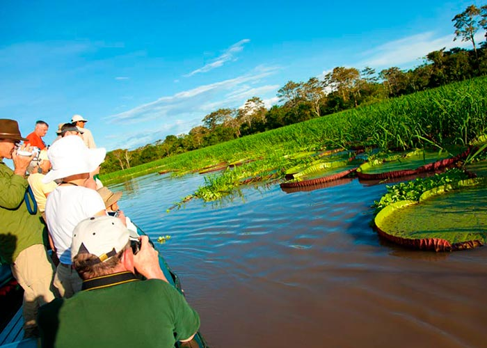 Jungle Travel Packages Iquitos 2 days