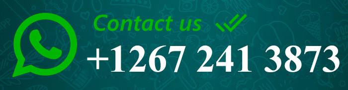 WhatsApp dating numerot Keniassa